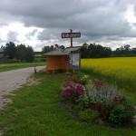 Kuhjavere tolmuvaba tee ja lillepeenardega
